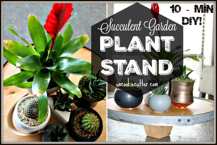 Plant Stand for a Succulent Garden- March 10 Min DIY