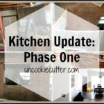 Kitchen Update – Halfway Through Phase One