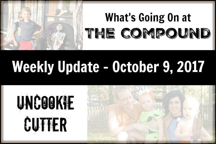 I've got an update today on what's been going on over at the compound. Fall is crazy, kitchen update and new family members. UncookieCutter.com